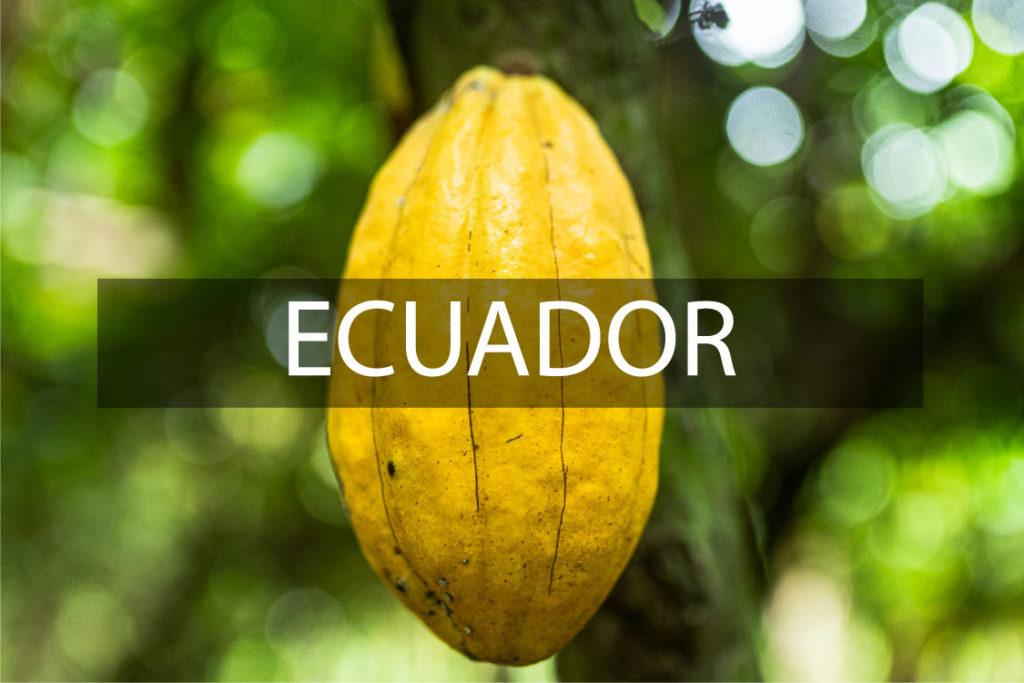 Grano-Ecuador