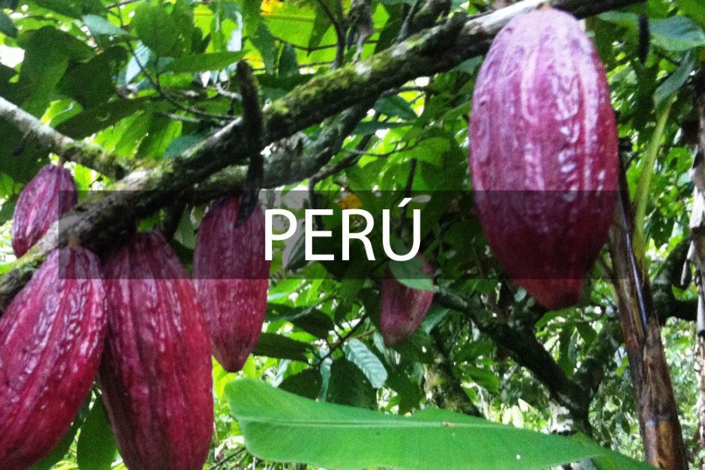 Grano Perú